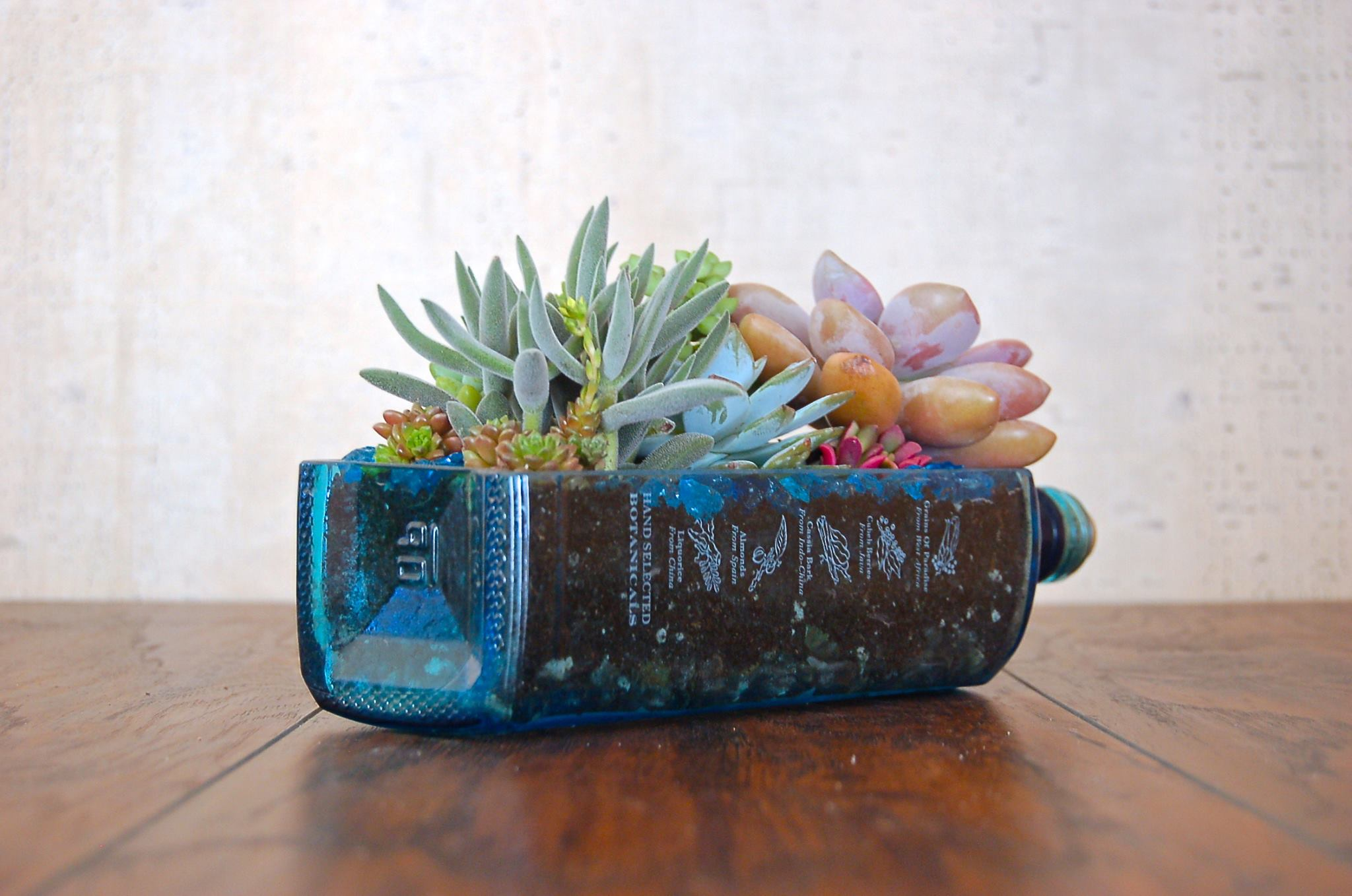 Bombay 174 Sapphire Long Cut Liquor Bottle Planter Pot