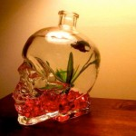 skull bottle fish aqurium 4